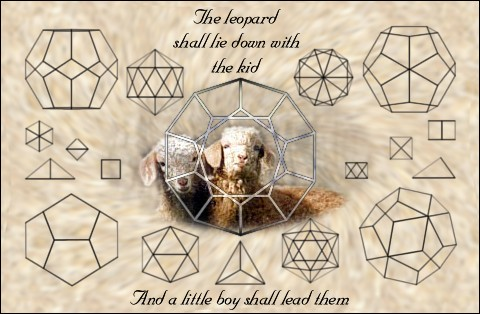 platonic solids and doe kids