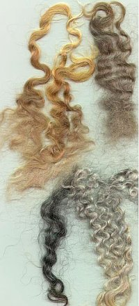 mohair locks for textilists, fiber crafters, spinners and hobbyists